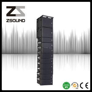 Professional Sound Loudspeaker Audio System pictures & photos