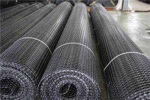 Factory Supply Geogrid for Slope Reinforcement Gg60PP pictures & photos