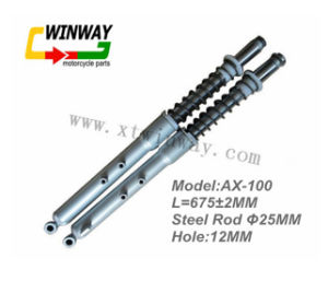 Ww-6105 Ax100 Motorcycle Front Fork, Absorber pictures & photos