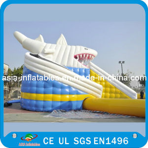 Giant Inflatable Water Park with Shark Slide for Sale pictures & photos