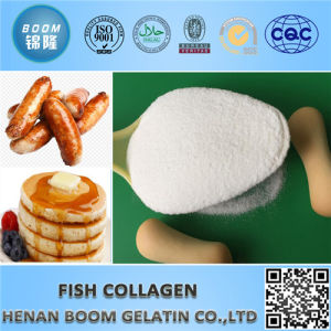 Applicable to Beverage for Fish Collagen as Food Additives pictures & photos