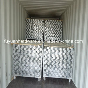 Hot DIP Galvanized Ground Screw pictures & photos