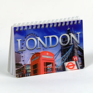 3D Cover Small Size Custom Notepad pictures & photos