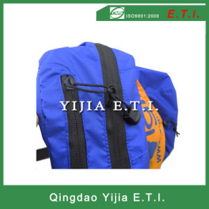 Foldable Polyester Backpack Bag pictures & photos