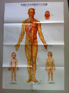 Acupuncture Charts (3 posters/set in Englisn) pictures & photos