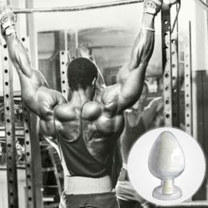 99% Purity Testosteronebase No Ester for Bodybuliding pictures & photos