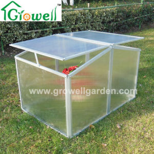 Two Windows Cold Frame Mini Greenhouse for Young Plants Growing (F322) pictures & photos