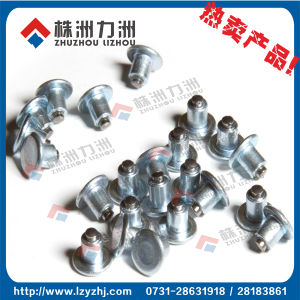 Tungsten Carbide Ice Snow Gripping Tire Studs pictures & photos