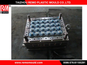 RM0301033 Water Cap Mould, Filter Cap Mould, Seal Cap Mould, Cap Mould pictures & photos