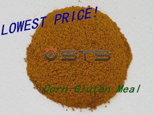 Corn Gluten for Fodder with Lowest Price (protein 65%) pictures & photos