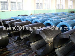 Steel Wire, Spring Steel Wire, Galvanized Steel Wire pictures & photos