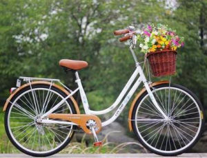 "24"" Comfort Lady/Ladies Bicycle/Star Bike/Student Bike pictures & photos"