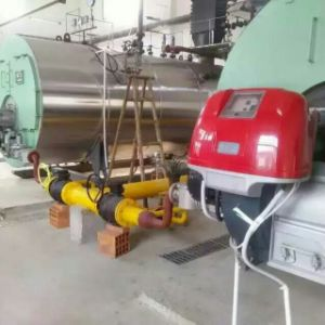 Efficiency Oil/ Gas Fired Steam Boiler pictures & photos