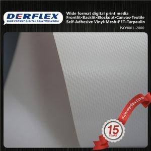 PVC Material Manufacturer Frontlit Banner Flex PVC Printing Banner pictures & photos