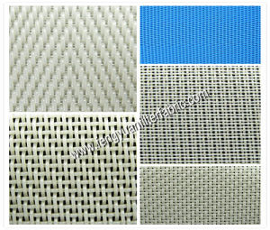 Polyester Pulp Mesh pictures & photos