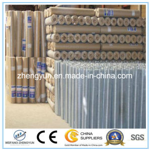 Galvanized Welded Wire Mesh Panel Prices pictures & photos