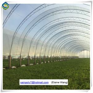 Professional Galvanized Steel UV Treated Plastic Film Greenhouse pictures & photos