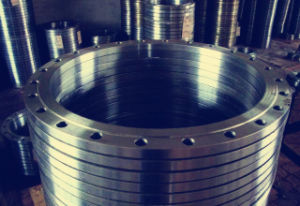 Export Customed Stainless Steel Flange pictures & photos