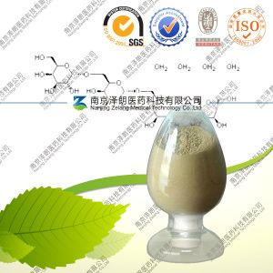 Loquat Leaf Extract Ursolic Acid Powder Treating HIV Aids pictures & photos