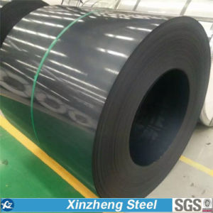 (0.14mm-1.0mm) Dx51d PPGI Steel Coil, Color Coated Galvanized Steel Coil pictures & photos