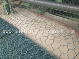 Factory Outlet PVC Coated Hexagonal Wire Mesh/Chicken Wire Mesh pictures & photos