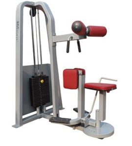 Fitness Equipment / Gym Equipment / Rotary Torso (SW20) pictures & photos