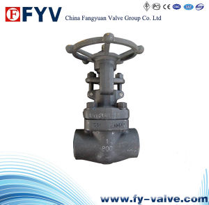 API 602 Forged Steel F304 Gate Valve pictures & photos