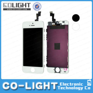 Crazy Sale for Mobile Phone Parts Phone Accessories LCD Display for iPhone 5s