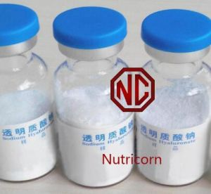 Hyaluronic Acid Sodium Hyaluronate Ha Powder pictures & photos
