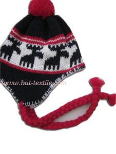 Fashion Hat Bat-H04 pictures & photos