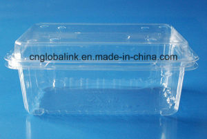 Food Grade Plastic Clamshell Packing Container pictures & photos