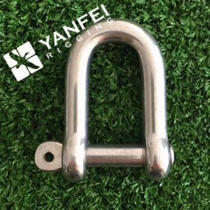 Stainless Steel AISI304/316 D Shackle pictures & photos