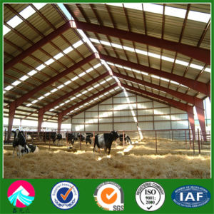 Prefab Steel Structure Agriculture Building pictures & photos