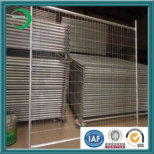 Steel Temporary Fence Panel Factory Supply pictures & photos