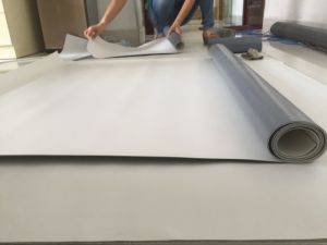 Reinforced Polyvinyl Chloride (PVC) Waterproof Membrane pictures & photos