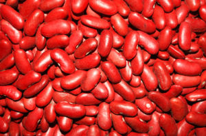 Top Quality Red Kidney Bean (180-200/100G) pictures & photos