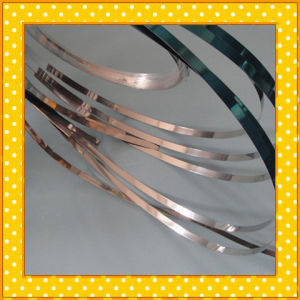 316 Narrow Stainless Steel Strip pictures & photos