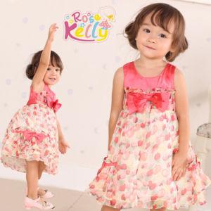 Littile Flower Baby Girl Dress, Lovely Baby Clothes for Children