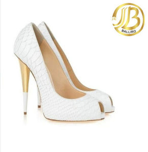2015 Hot Style Sexy High Heels Lady Shoes (VA06)
