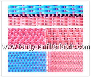 Plain Woven Dryer Fabrics pictures & photos