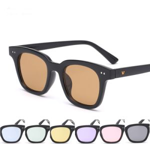 2017 New Coming Plastic Designer Fashion Sunglass with Metal Decoration (6804)