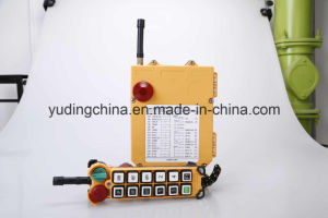 China Factory 220V Long Distance Wireless Remote Controller F24-12D pictures & photos
