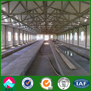Roof Trusses Light Steel Frame Prefab Chicken Poultry House (XGZ-pH033) pictures & photos