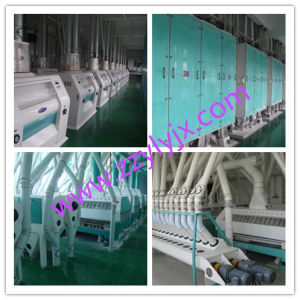 Wheat, Maize, Rice Flour Mill for Sale pictures & photos