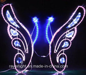 Factory Supply Butterfly LED Motif Rope Lighting pictures & photos