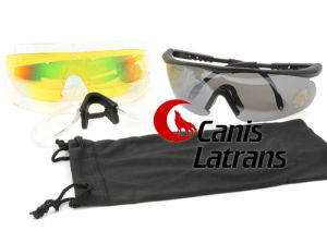 Goggles for Sports Cl8-0015 pictures & photos