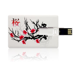 Factory Customized 8 GB Cheap High Quality Card USB Flash pictures & photos