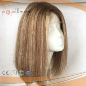 100% Human Hair Silk Top Wig (PPG-l-0401) pictures & photos