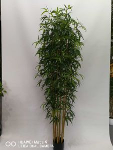 Decorative Artificial Plants of Bamboo Gu-Bj-1632L-5tr pictures & photos
