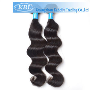 Beauty Remy Brazilian Hair Weaving (KBL-BH-LW) pictures & photos